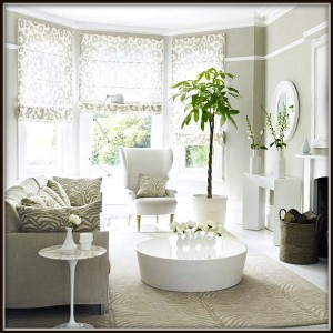 Freshen-Up-Your-Home-for-a-New-Beginning-300x300